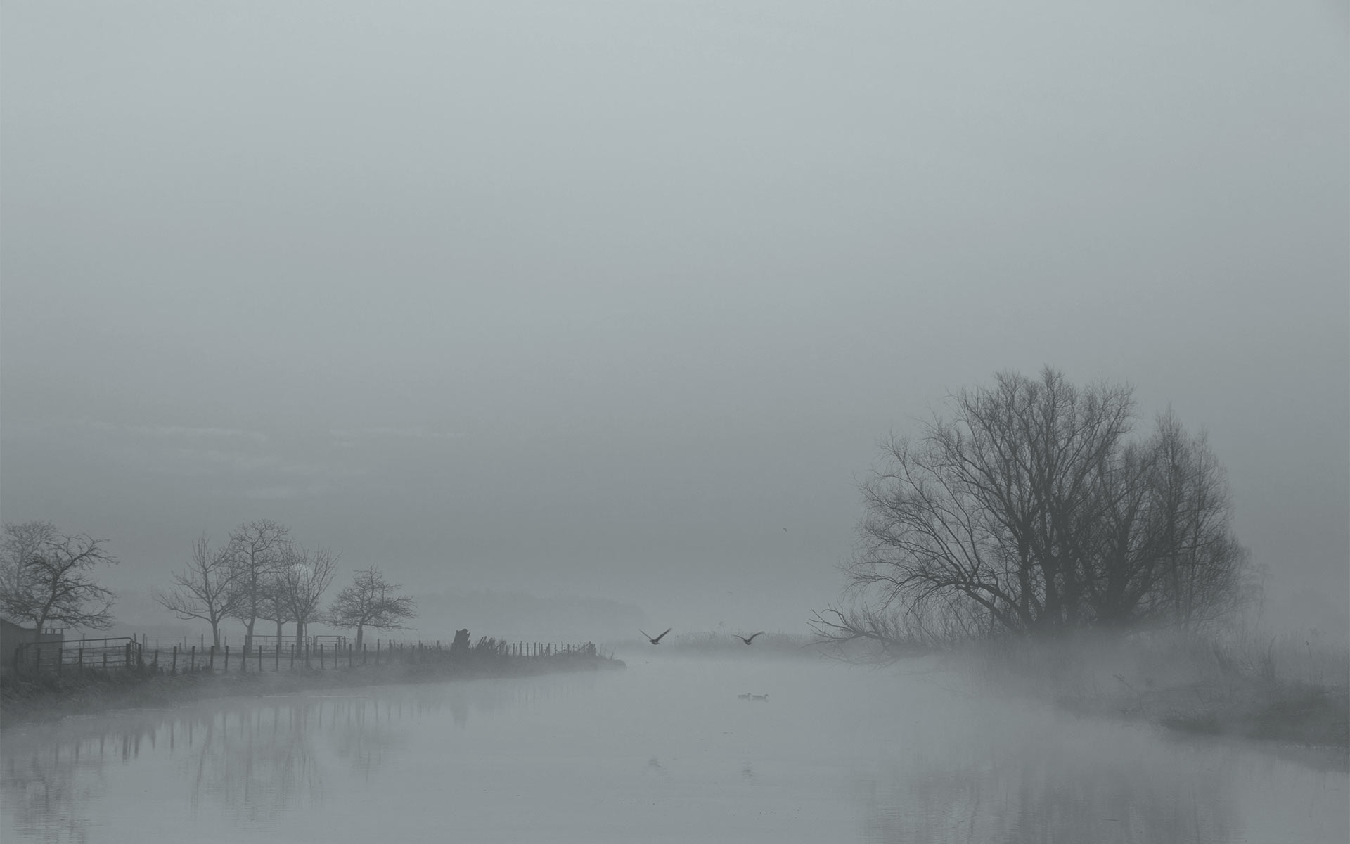 I AM LANDSCAPE PHOTOGRAPHER